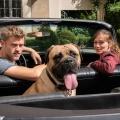 """Vor dem Start: """"Der Bulle und das Biest"""": Mit Hund und Herrchen auf Quotenfang – Neue Sat.1-Serienhoffnung am Montagabend – Bild: Sat.1/Christoph Assmann"""