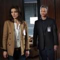"""""""Criminal Minds: Beyond Borders"""" nach der zweiten Staffel abgesetzt – """"Criminal Minds"""" überlebt zweites Spin-Off – Bild: CBS"""