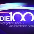 """RTL findet neuen Starttermin für """"Die 100 witzigsten Tiere"""" – Dreiteilige Rankingshow im August – © RTL"""
