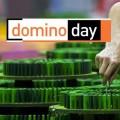 """[UPDATE] """"Domino Day"""" kehrt nach elf Jahren zurück – Produktionsfirma kündigt Showcomeback der fallenden Steine an – © EndemolShine Nederland"""