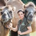 """""""Tierärztin Dr. Mertens"""" muss Leipziger Zoo verlassen – Neue Staffel muss wegen Corona den Drehort wechseln – Bild: ARD/Steffen Junghans"""