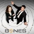 """""""Bones"""": Millionen-Streit der Hauptdarsteller endet in Vergleich – Mehr als 50 Millionen US-Dollar Betrugs-Schaden festgestellt – Bild: FOX"""