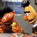 """Ernie und Bert: Schwules Paar oder """"nur"""" beste Freunde? – Langjähriger Autor Mark Saltzman bringt Diskussion neu in Schwung – © Sesame Workshop"""