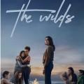 Die beste Serie des Jahres 2020 – Das Review-Jahr im Rückblick – © Netflix; Showtime; Prime Video