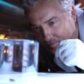 """RTL zeigt im Mai Serienfinale von """"CSI"""" – Am 10. Mai zur Primetime läuft """"Am Ende gilt nur, was wir getan"""" – Bild: RTL/CBS"""