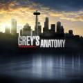 """""""Grey's Anatomy"""": Auftakt der 17. Staffel mit gewaltiger Überraschung – Ehemalige Hauptfigur kehrt für Besuch zurück – © ABC Studios"""