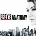 """""""Grey's Anatomy"""": 16. Staffel endet Corona-bedingt früher – ABC verzichtet auf die letzten vier Folgen der aktuellen Season – © ABC"""