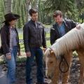 """""""Heartland"""": Kanadische Familienserie geht bei RTL Passion in die siebte Staffel – 18 neuen Episoden ab September – Bild: RTL Passion"""