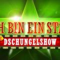 """RTL-""""Dschungelshow"""": Diese Kandidaten sind dabei – Zwölf Stars kämpfen um """"Goldenes Ticket"""" für das """"Dschungelcamp"""" – © TVNOW"""