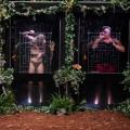 """Quoten: Dschungelshow mit starkem Auftakt, aber deutlich unter Camp-Niveau – Primetime-Sieg für """"Die Chefin"""", ARD punktet mit Tanja-Wedhorn-Film – Bild: TVNOW/Stefan Gregorowius"""