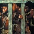 """History Channel bereitet """"Roots""""-Remake vor – 1970er-Jahre-Sklavereiserie soll neu aufgelegt werden – © Warner Bros. TV"""