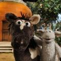 """""""Eine Möhre für Zwei"""": NDR dreht neue Folgen des """"Sesamstraße""""-Ablegers – In ihrem zweiten Fernsehfilm treffen Wolle und Pferd auf Piraten – © NDR / Uwe Ernst"""