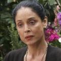 """Sonia Braga wird für ABC-Pilot """"Las Reinas"""" zum Crime-Boss – Ermittlerin wird mit ihrer kriminellen Familie konfrontiert – Bild: USA Network"""