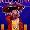 """Erste Enthüllung bei """"The Masked Singer"""": Das Schwein ist… – Review – ProSieben dreht an den richtigen Stellschrauben der Musik-Rateshow – © ProSieben/Screenshot"""