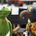 """""""The Muppets"""", """"The Catch"""" & Co.: ABC bestellt sechs neue Drama- und drei Comedyserien – Auch """"Dr. Ken"""" und """"The Family"""" unter den Glücklichen – Bild: ABC Studios / The Muppets Studios"""