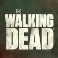 """""""The Walking Dead"""" endet mit Staffel elf! – AMC bestellt Spin-Off mit zwei bekannten Protagonisten – © AMC"""