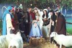 Mein Weihnachtswunder (Staffel 1, Folge 11) – © ProSieben