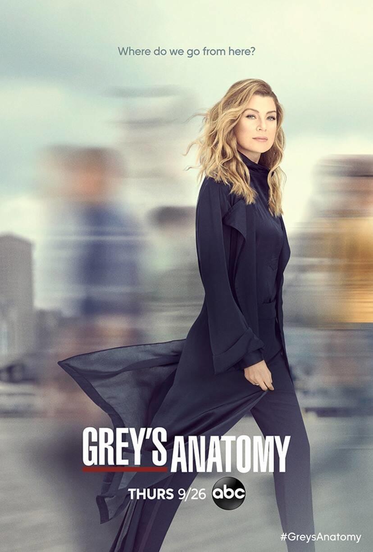 """Poster zur 16. Staffel von """"Grey's Anatomy"""" ABC"""