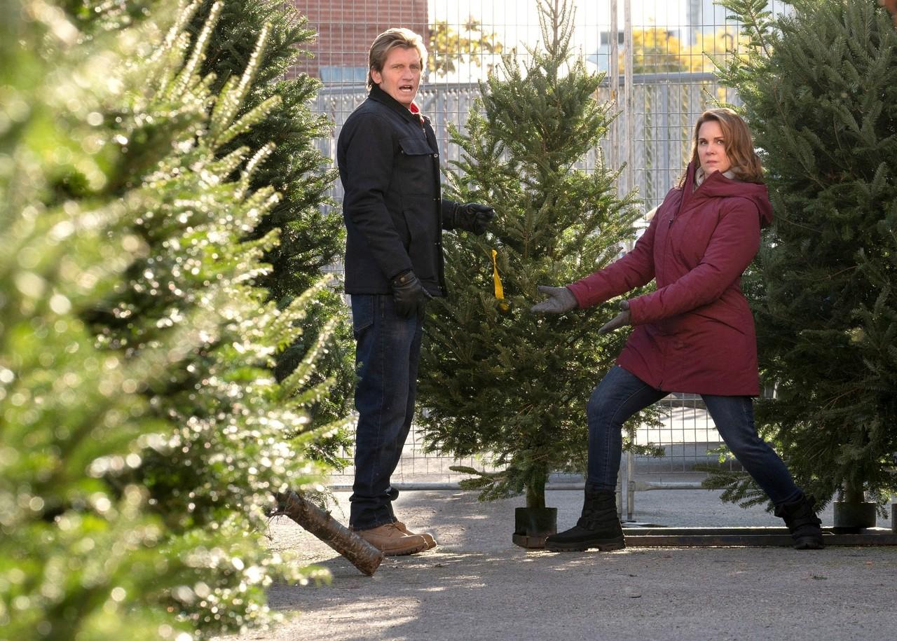 Auch beim Aussuchen des Weihnachtsbaumes haben Sean sr. (Dennis Leary) und Ann (Elizabeth Perkins) ein Herz für den Underdog. 2019 Fox Media LLC Cr: Jonathan Wenk/FOX