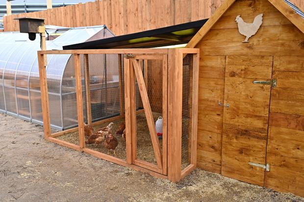 Der Hühnerstall Sat.1/Willi Weber