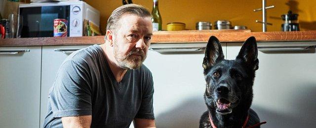 """Weniger hintergründig aber trotzdem nicht weniger fesselnd war """"After Life"""", das Netflix bei Ricky Gervais in Auftrag gegeben hatte. Die Serie erzählt die Geschichte eines Mannes, für den die Partnerschaft mit seiner Ehefrau das Wichtigste im Leben war – und der durch den Tod seiner Frau aus der Bahn geworfen wird, zudem dagegen kämpft, einen neuen Sinn im Leben zu finden. Nach einer in sich sehr runden ersten Staffel kann man nur hoffen, dass Netflix mit der Verlängerung dem Format keinen Schaden bereitet hat. Bild: Netflix"""