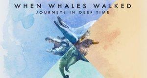 Als Wale laufen konnten – Eine Reise in die Vorzeit – Bild: Twin Cities Public Television Inc./Shining Red Films/PBS