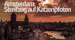 Amsterdam: Streifzug auf Katzenpfoten – Bild: EMS Films