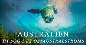 Australien – Im Sog des Ostaustralstroms – Bild: Wild Pacific Media