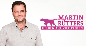 Martin Rütters Helden auf vier Pfoten – Bild: TVNOW/Boris Breuer