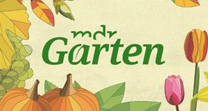 Mdr Garten Sendetermine 27 03 2021 02 05 2021 Fernsehserien De