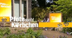Pfote sucht Körbchen – Bild: NDR