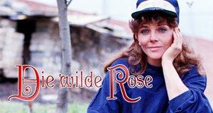 Die wilde Rose – Bild: Televisa