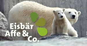 Eisbär, Affe & Co. – Bild: ARD