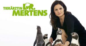 Tierärztin Dr. Mertens – Bild: ARD