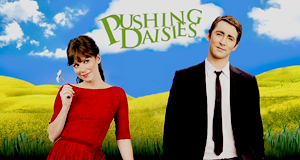 Pushing Daisies – Bild: Warner
