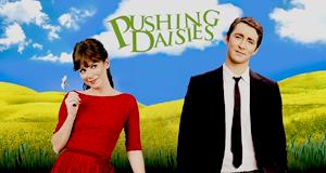 Pushing Daisies – Bild: Warner