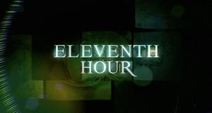 Eleventh Hour - Einsatz in letzter Sekunde – Bild: kabeleins