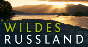 Wildes Russland – Bild: Polyband/WVG