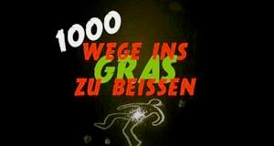 1000 Wege, ins Gras zu beißen – Bild: DMAX