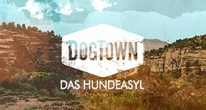 DogTown - Das Hundeasyl – Bild: National Geographic Channel/Screenshot