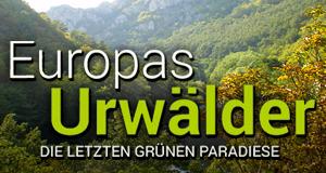 Europas Urwälder – Bild: Studio Hamburg Enterprises / Ökologix