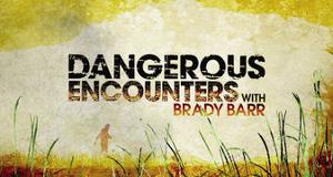 Gefährliche Begegnungen – Bild: National Geographic Channel