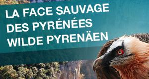 Wilde Pyrenäen – Bild: BR/Jens-Uwe Heins