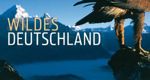 Wildes Deutschland – Bild: arte/rbb/NDR Naturfilm/Günther Goldmann