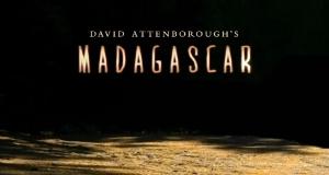 Madagaskar – Bild: BBC
