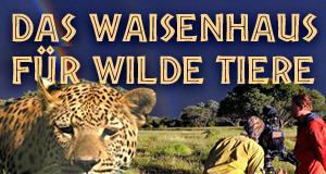 Das Waisenhaus für wilde Tiere – Bild: SWR/Harald Pokieser / SWR/Cosmos factory & Eikon Südwest