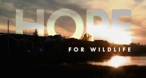 Hope – Schutzengel der Wildtiere – Bild: Arcadia Entertainment Inc.