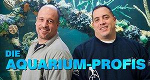 Die Aquarium-Profis – Bild: Discovery Communications, LLC