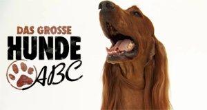 Das große Hunde-ABC – Bild: TLC
