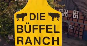 Die Büffelranch – Bild: ZDF (Screenshot)